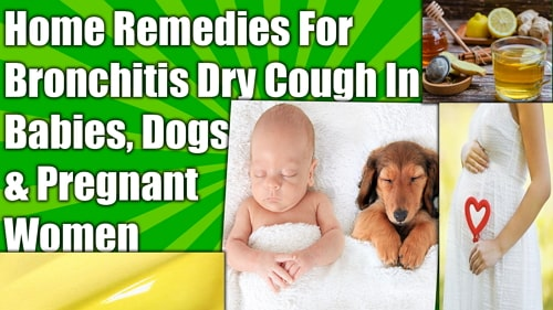 Home Remedies For Bronchitis Dry Cough Dogs Babies Pregnant Women