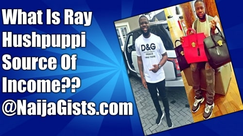 ray hushpuppi source of income