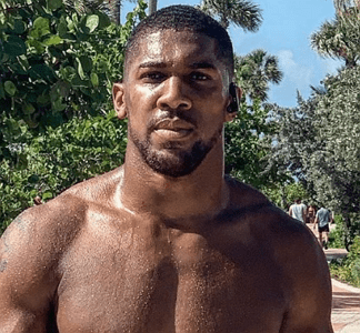 anthony joshua video fight