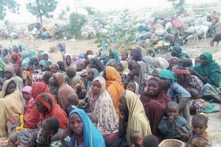boko haram farming slaves