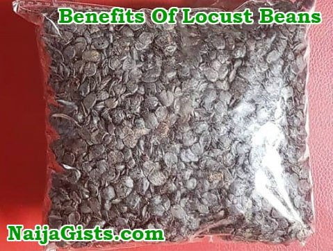 health benefits of iru locust bean