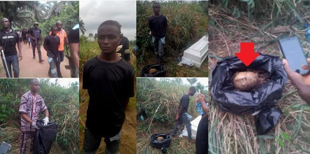 imo state forest of horror