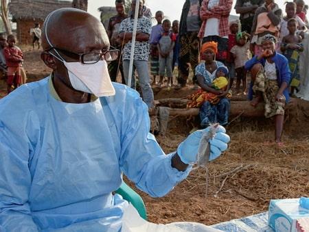 History Of Lassa Fever In Nigeria