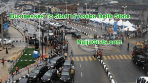 4 Profitable Businesses To Do In Asaba Delta State Nigeria This Year