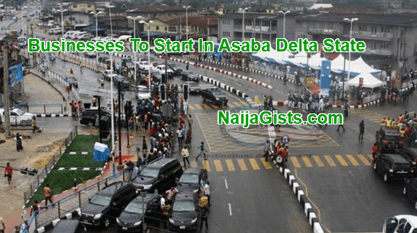 business ideas in asaba delta state