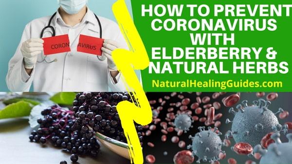 natural herbs for coronavirus