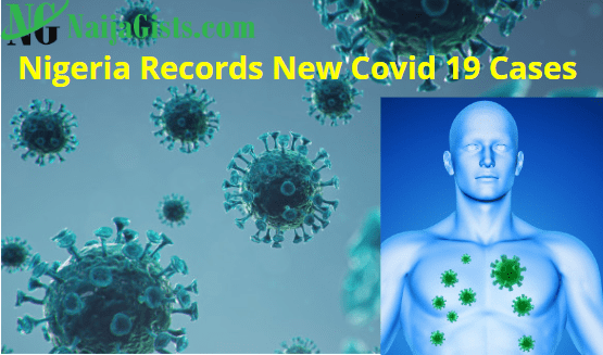 nigeria new covid19 cases deaths