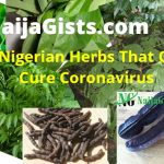 7 Nigerian Herbs That Can Cure Coronavirus