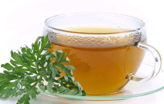 Artemisia tea cure covid 19
