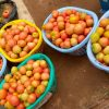 zero hunger fighter nigeria