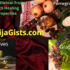 biblical fruits and healing properties