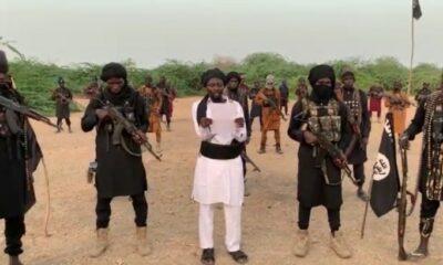 boko haram new leader shekau commits suicide sambisa