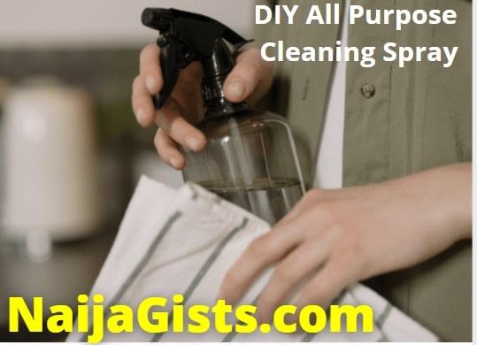 diy all purpose cleaning spray recipe